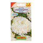 "Семена цветов Астра ""Александрия"" белая, О, 0,1 г"