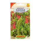"""Семена цветов Амарант """"Каскад"""", смесь окрасок, О, 0,5 г"""