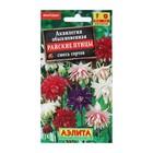 """Семена цветов Аквилегия """"Райские птицы"""", смесь окрасок, Мн, 0,2 г"""