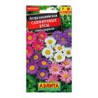 """Семена цветов Астра альпийская """"Сапфировые бусы"""", смесь окрасок, Мн, 0,1 г"""
