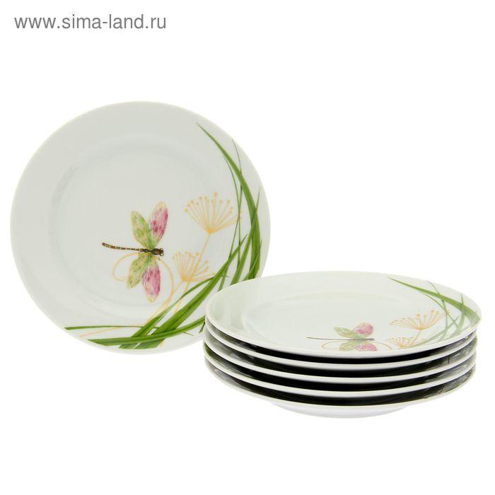 "Набор тарелок мелких 17 см ""Стрекоза"", 6 шт"