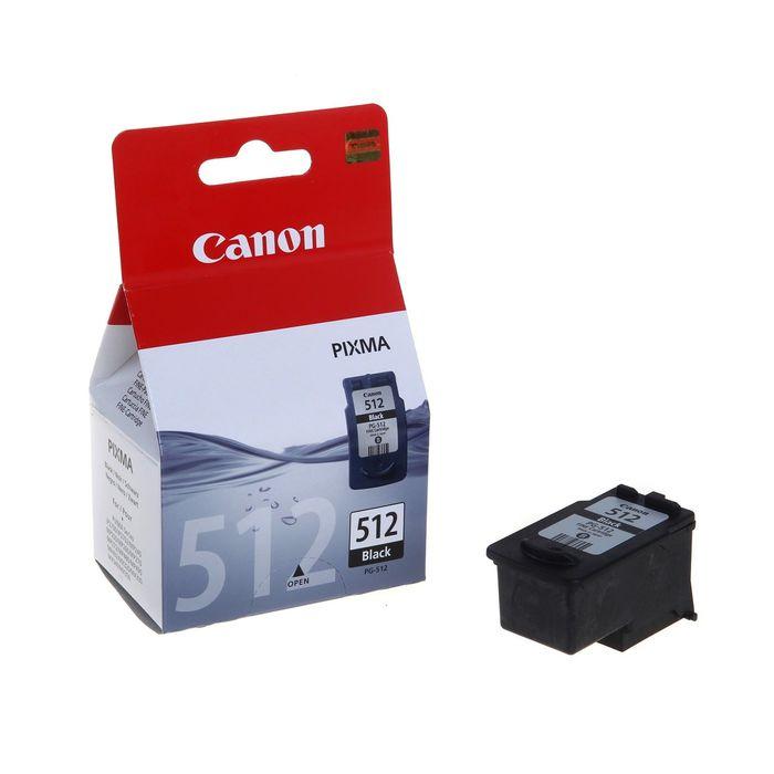 Картридж струйный Canon PG-512 2969B007 черный для Canon MP240/MP260/MP480