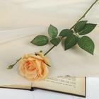 """Цветок искусственный """"Роза Мари"""" светло-оранжевая"""