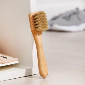 Щётка для обуви для нанесения крема Тарри, 15×2 см, конский волос