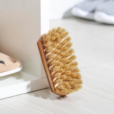 Щетка обувная, натуральная щетина 9,4 см, цвет МИКС