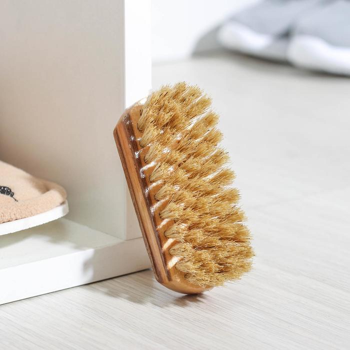 Щетка для обуви Тарри, 9×3,5 см, натуральная щетина