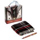 """Подарочный набор """"Самому успешному"""": шарф, ручка"""