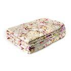Одеяло Мягкий сон облегченое 172х205 см, Овечья шерсть 200г/м, микрофибра 70г/м, чехол МИКС,