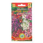 """Семена цветов Льнянка """"Яркий букет"""", смесь, О, 0,2 г"""