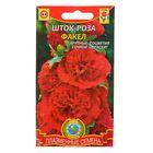 """Семена цветов Шток-роза """"Факел"""", Дв., 12 шт"""