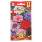 Семена цветов Василёк махровый, О, 0,5 г