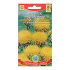 Семена цветов Василек Золотисто-желтый, Мн, 0,2 г