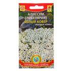 """Семена цветов Алиссум Лобулярия """"Белый ковер"""", О, 0,24 г"""