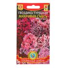 Семена цветов Гвоздика турецкая, махровая, смесь, Дв., 0,2 г
