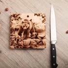 Доска из массива кедра «Медведь», квадратная, 18 × 18 см