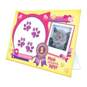Отпечаток лапки животного 'Мой лучший друг', кот Ош