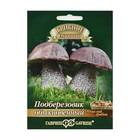 """Мицелий на компосте """"Подберезовик"""", на зерновом субстрате, 15 мл"""