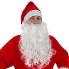 Карнавальный набор Деда Мороза, 2 предмета: колпак, борода