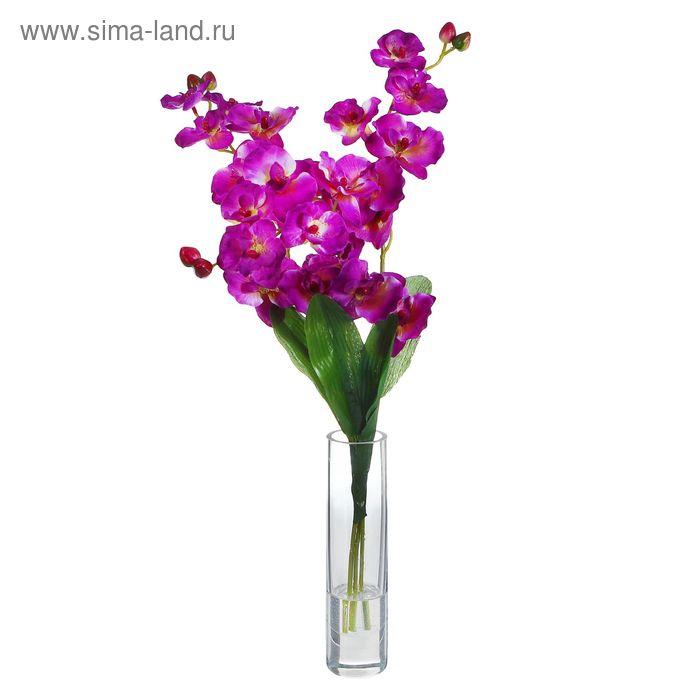 """Композиция из цветов """"Пурпурные орхидеи"""""""