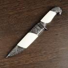 Сувенирный нож, белые вставки, рукоять в форме головы орла, 21 см