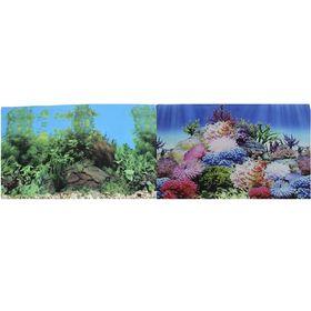 Фон для аквариума двухсторонний Коралловый рай/Подводный пейзаж 50х100см (9099/9031)
