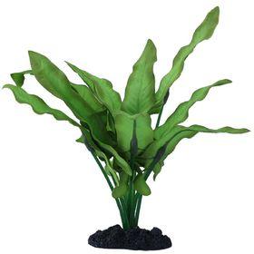 Шелковое растение  PRIME Анубиас Хастифолия 20см