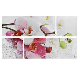 """Модульная картина на подрамнике """"Орхидеи"""", 2 шт. — 74×29 см, 2 шт. — 29×29 см, 60×105 см"""