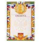 Грамота «3 место. Российская символика с лавром»