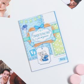 Папка для свидетельства о рождении мальчика «Мои первые документы», под новый формат, А5, 23 х 17 см