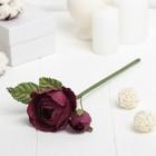 """Декоративный цветок """"Королевская роза"""", бордовый"""