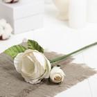 """Декоративный цветок """"Королевская роза"""", белый"""