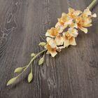 декоративные цветы из Тайланда