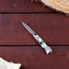 A pocket knife blade drop-point chrome 5.3 cm, handle a Gun khaki, 12.5 cm