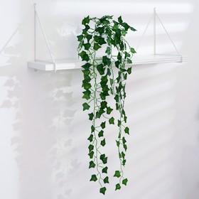 """Лиана """"Листья плюща"""" 80 см"""