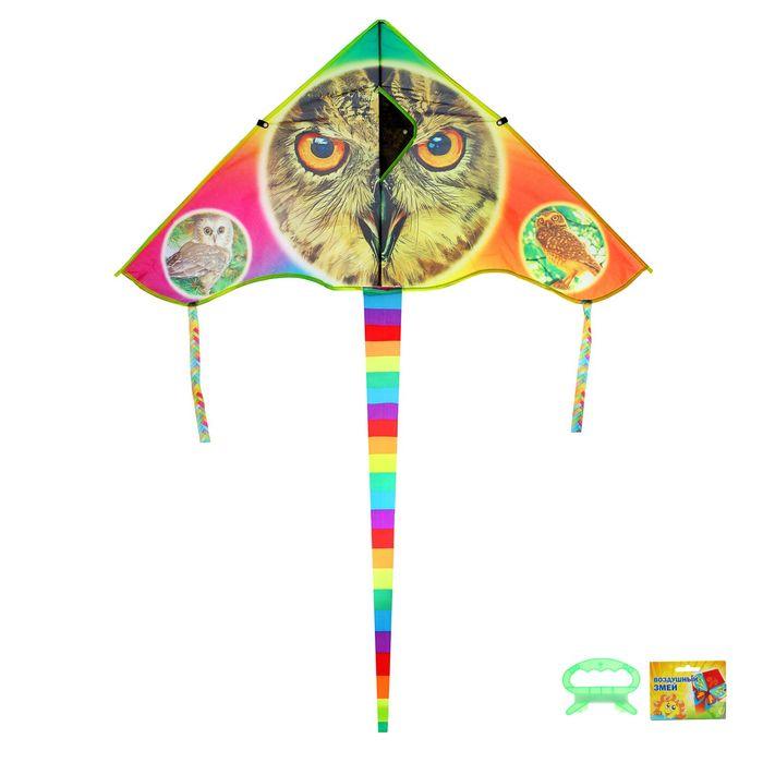 Воздушный змей «Сова», с леской