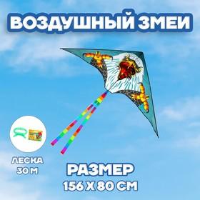 Воздушный змей «Орёл», с леской
