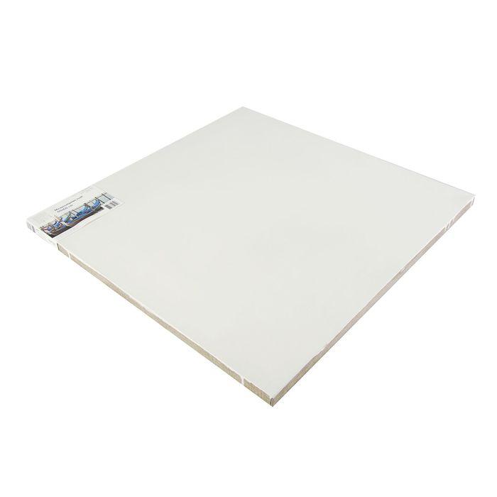 Холст на подрамнике лён 100% эмульсионный грунт 2*60*60 см мелкозернистый, 180 г/м² Туюкан Т0003846