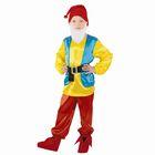 """Детский карнавальный костюм """"Гномик"""", р-р 60, рост 110-116 см"""