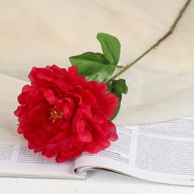 Цветы искусственные 'Пион бархатный' 15*55 см, красный Ош