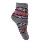 Носки детские плюшевые С22 цвет серый, принт МИКС, р-р 16