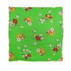 Подушка детская, размер 40*40 см, цвет зелёный 12-2С