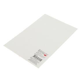 Картон грунтованный 20х30 см, двусторонний (2 мм), акриловый грунт, «Подольские товары для художников» Ош