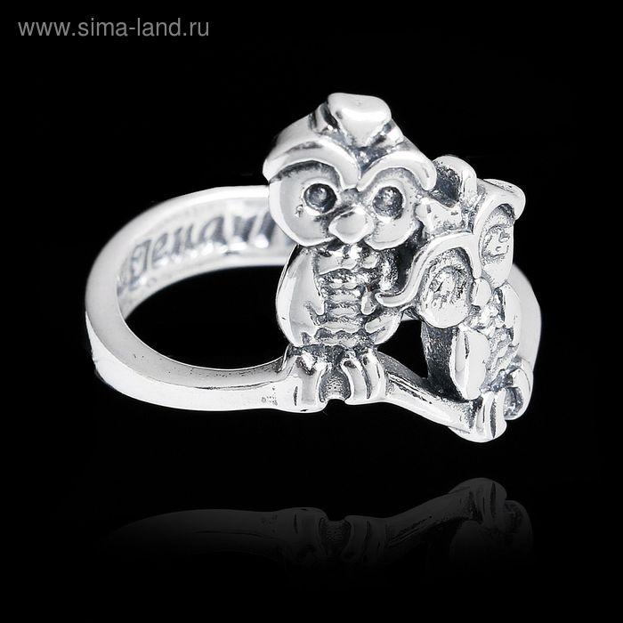 """Кольцо """"Торотороко"""", размер 19, цвет чернёное серебро"""