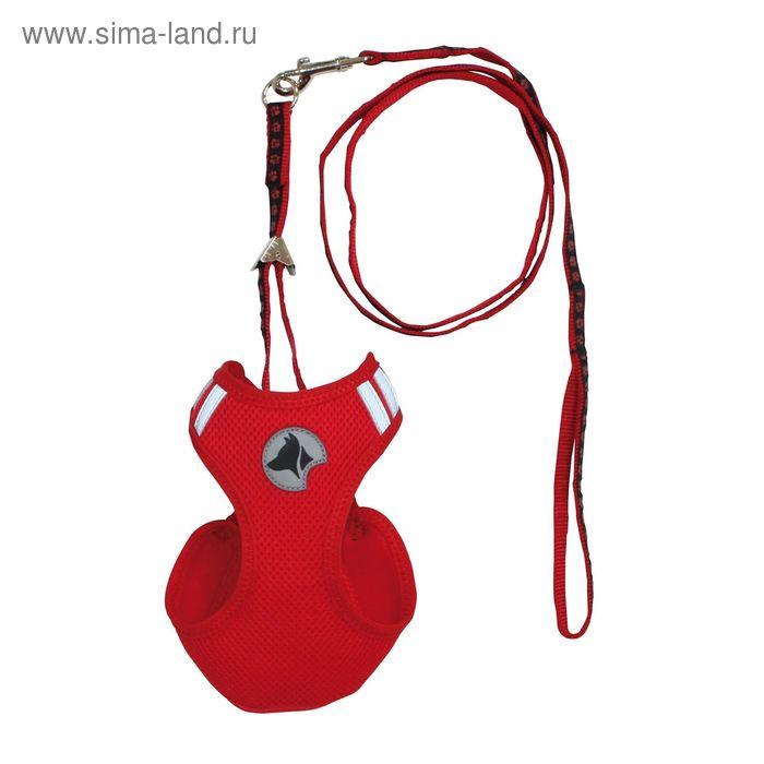 Шлейка-нагрудник Hiking c отражающим пластиком,+поводок, L, 41-47 см, нейлон, красная