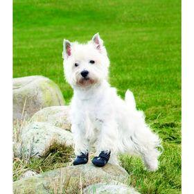 Ботинки Trixie Walker Active для собак,  XS-S, 2шт.