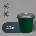 Бак пищевой «Колор», 40 л, с крышкой, цвет МИКС