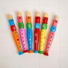 Музыкальная игрушка «Дудочка средняя», цвета МИКС - фото 106524969
