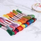 Набор ниток мулине, №1+№5, 24шт, 8±1м, разноцветный