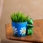 """Горшок для цветов """"Лягушка"""" 11 см"""
