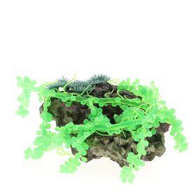Композиция из кораллов пластиковая 22х18х10см (SH201A)